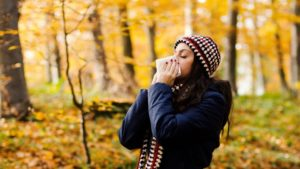fall allergies ragweed denton allergist